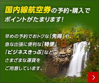 JAL(ジャル) 日本航空 国内線航空券