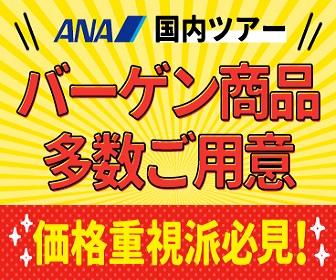ANA SKY WEB TOUR(国内)